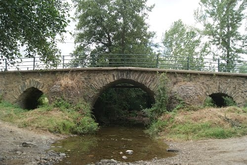 ponte castro de avelãs.jpg