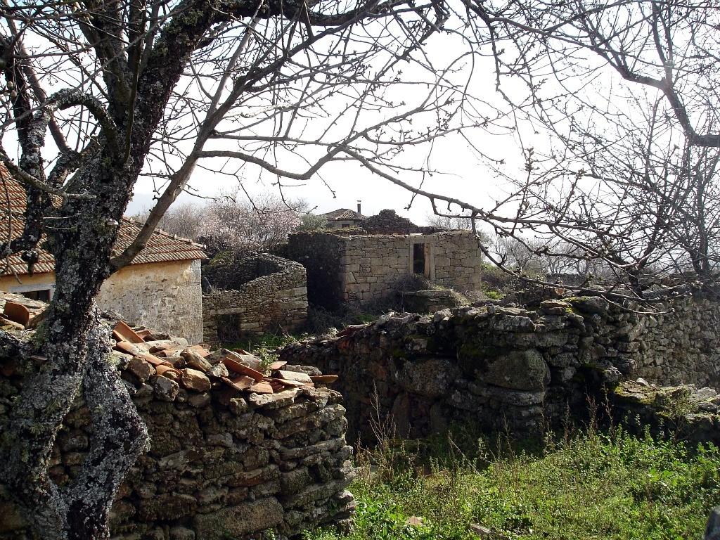 aldeia_gaviao_3.jpg