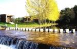 parque merendas rio angueira3.jpg