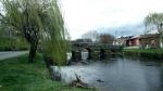 Ponte Frieira 5.jpg